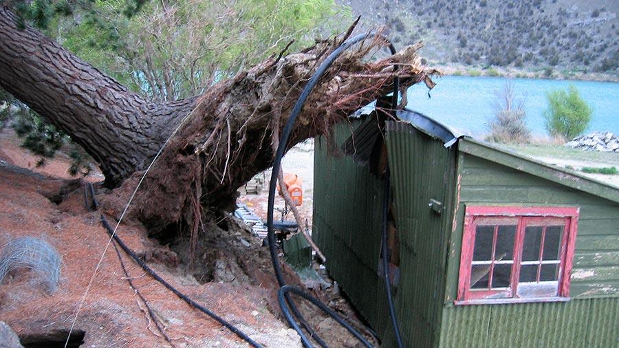 Emergency Work - NZ Tree Care