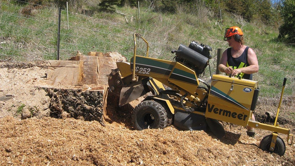 Stump Grinding - NZ Tree Care