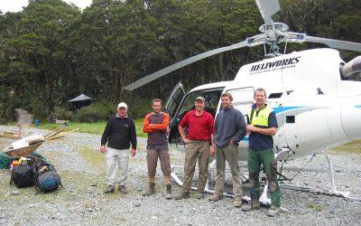 NZ Tree Care at Lake McKenzie
