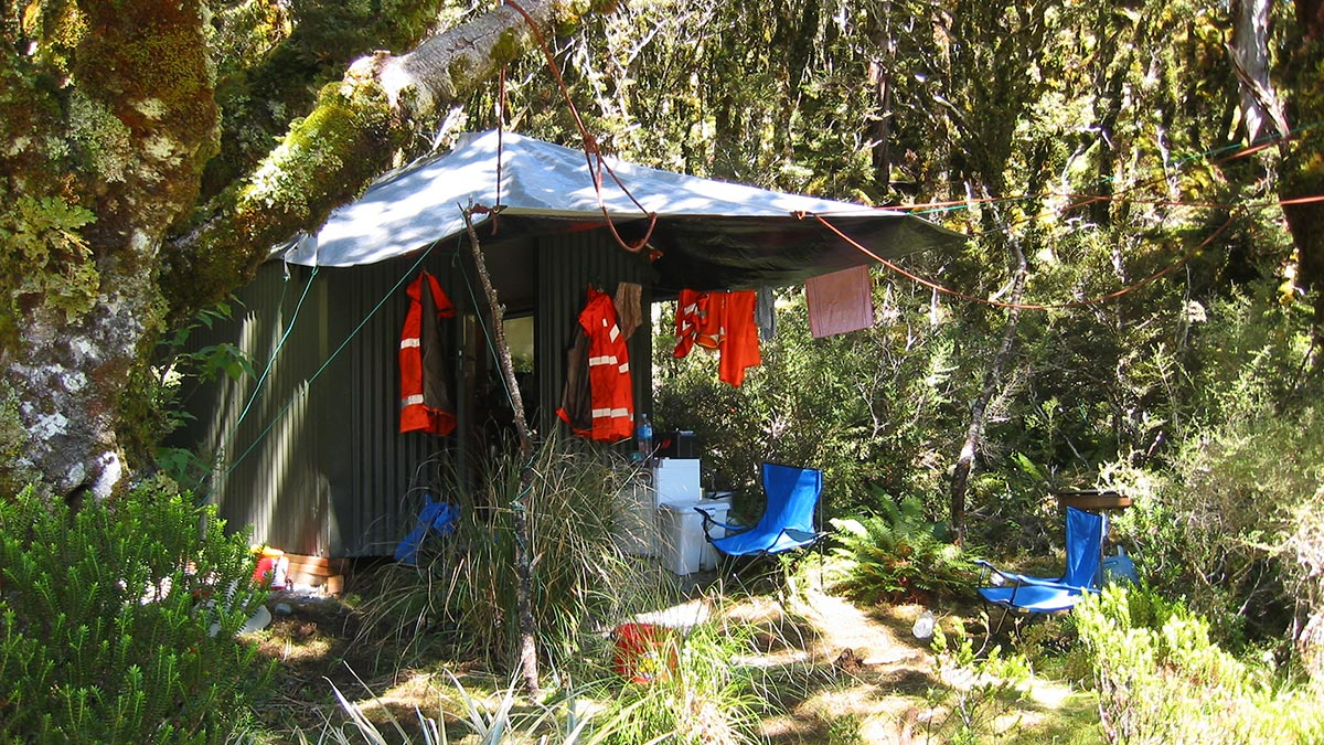 Home in the bush. High-vis jackets on the line.